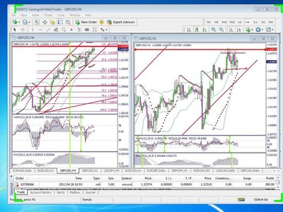 Scientific Forex - Forex Trading Course( all Cristina Ciurea Webinars)